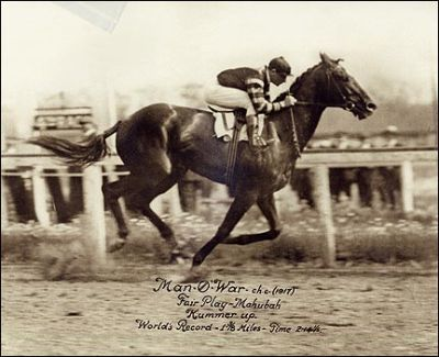 Man o' War's funeral: Remarkable final tribute for majestic champion